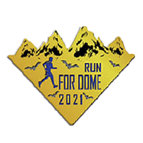 RUN for DOME 2021